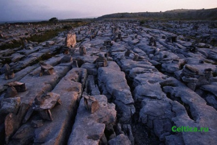 Limestone Pavement, Burren